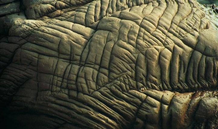 Geološke 0