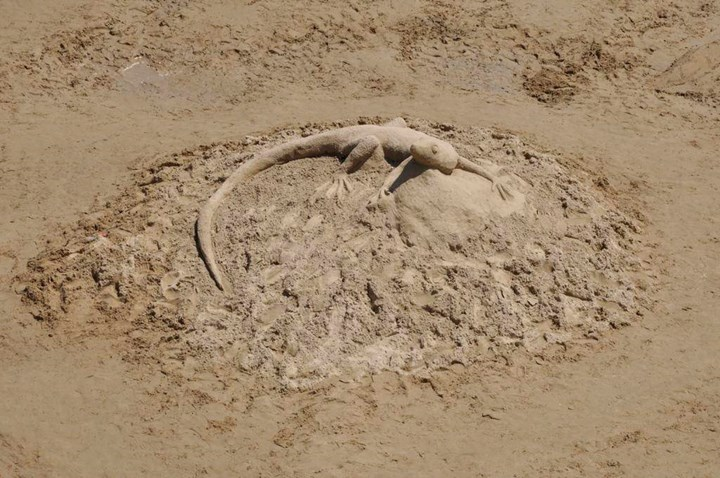 Sandy sculptures 1