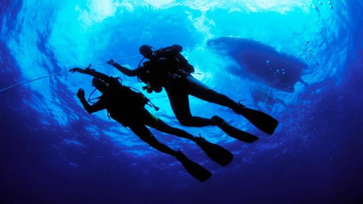 Diving 0